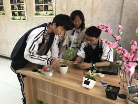 《宁波晚报》宁波中职生设计智能花卉养护机